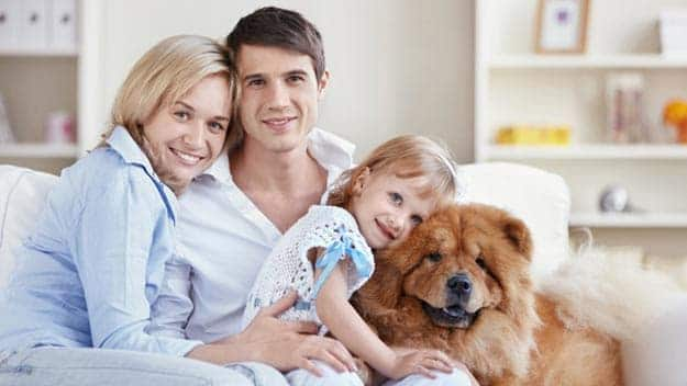 Wills & Trusts dog-young-family Direct Wills Westbourne Green